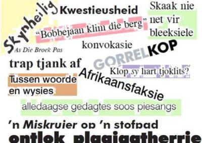 afrikaanse idiome gemeng
