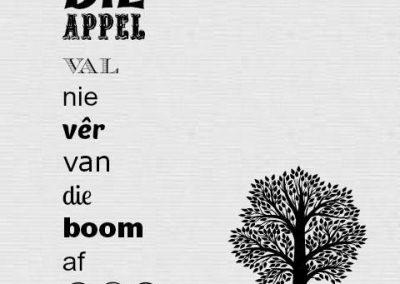 die appel val nie ver van die boom af nie